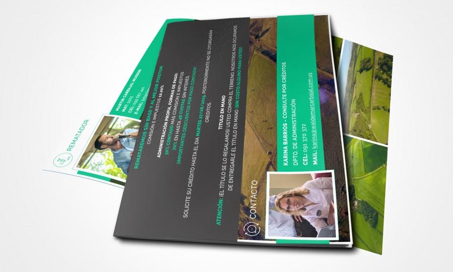 diseño de brochures negocios rurales