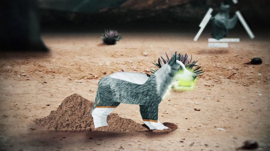 dog animation