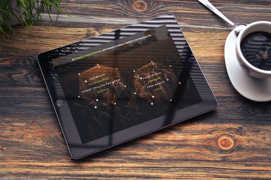 sitio web en tabletas