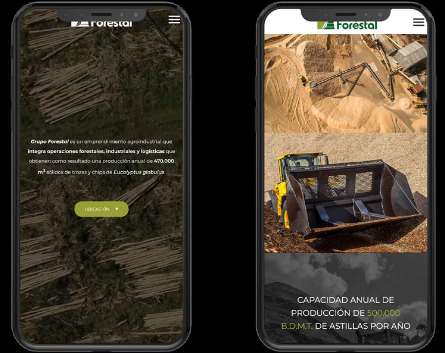 forestal web design uruguay