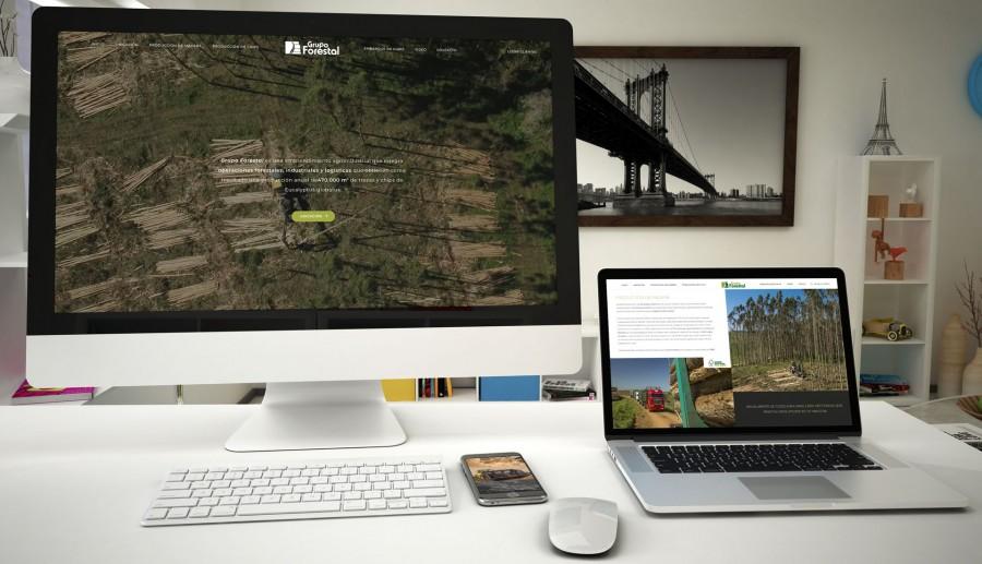 web design for forestal group