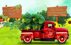 vida sana con frutas y verduras