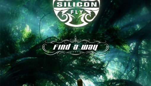 album silicon fly