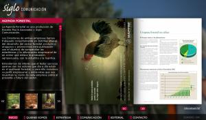 siglo diseño web uruguay