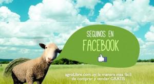 clasificados del agro online