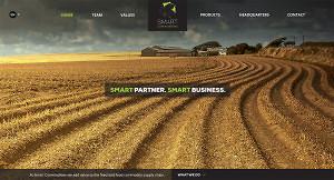 diseño web smart commodities