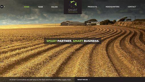 diseño web smart commodities