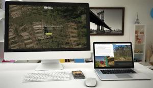 diseño web forestal uruguay